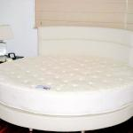 Round Mattress, Round Base, Custom Headboard